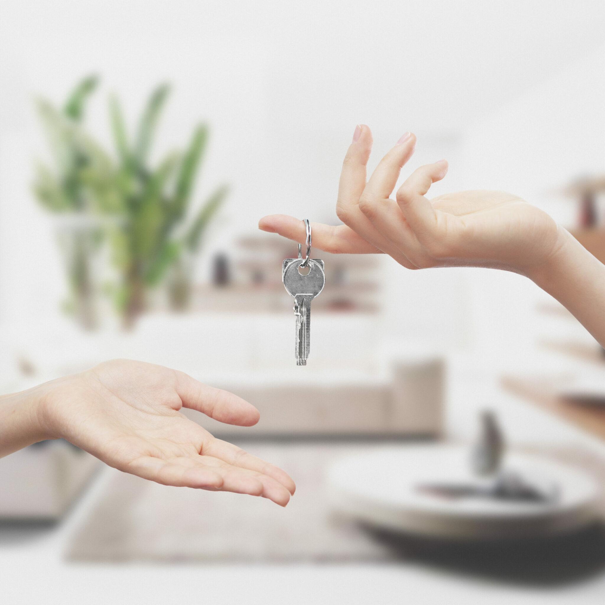 Accueil des voyageurs et remise des clés par Guest Adom